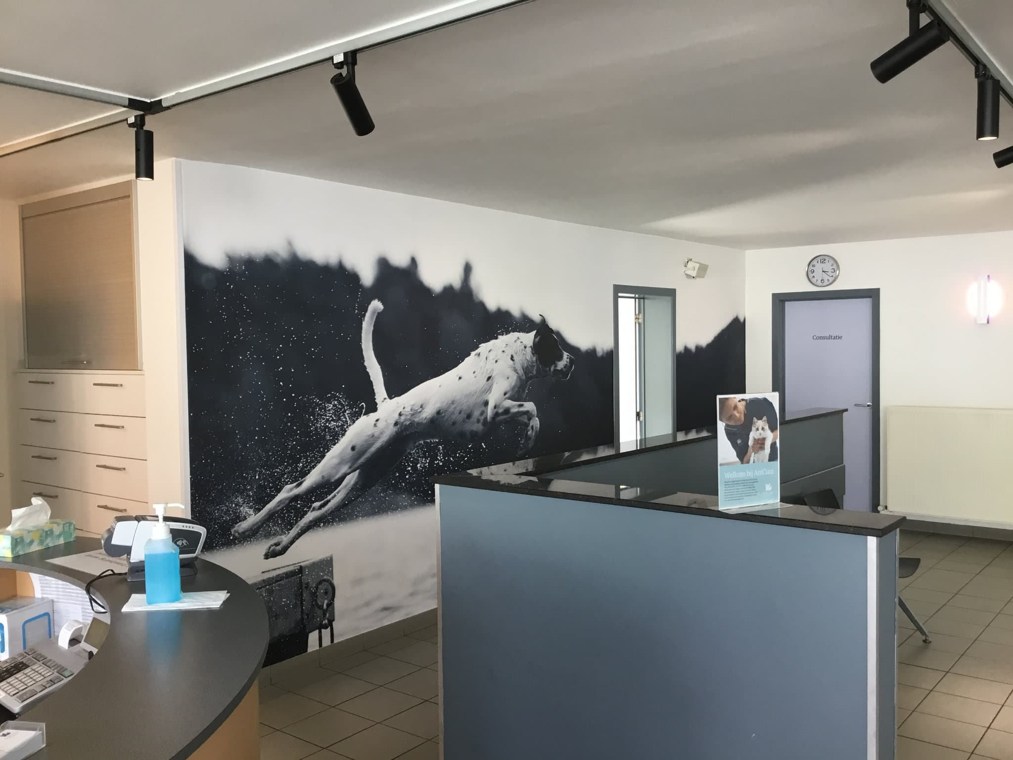 Sign & Display - Binnenreclame - Office branding - Anicura