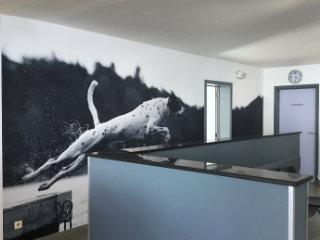 voorbeeld wanddoeken office branding